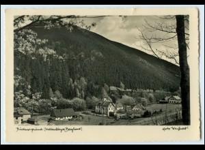 Y15725/ Bürtnergrund Waldenburger Bergland b. Görbersdorf Schlesien Foto AK 1937