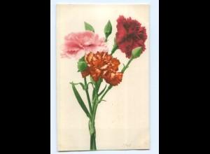 Y6907/ Blumen Nelken AK Verlag Rommel & Co. No. 563 1904