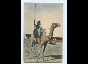 T7639/ Aden Jemen Soamli Camel Rider AK ca.1912