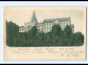 Y6807/ Gera Schloss Gruß aus Gera Reliefkarte 1900 AK
