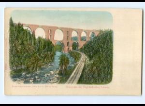 Y6786/ Vogtländische Schweiz Elstertalbrücke Reliefkarte ca.1900 AK