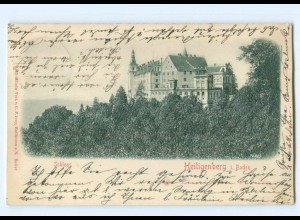 Y6793/ Heiligenberg in Baden Schloss Reliefkarte 1901 AK
