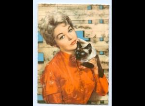 Y6974/ Kim Novak mit Katze Ufa AK ca.1965