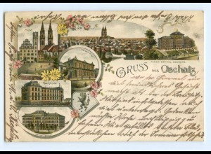 T7689-047./ Oschatz Gruß aus Oschatz 1899 Litho AK