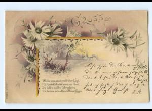 Y7097/ Gruß aus Litho AK Blumen Jugendstil 1900