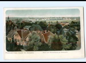 T9607-044./ Altscherbitz Irren-Anstalt AK ca.1900