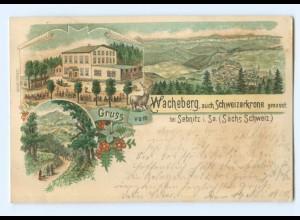 U1286/ Gruß vom Wacheberg bei Sebnitz Litho AK 1900