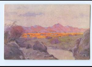 Y8050/ Kolonialkriegerdank Deutsch-Südwestafrika Kolonien AK ca.1915