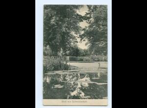 Y8113/ Gruß aus Schwarzenbek 1914 AK
