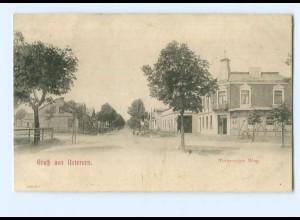 U1423/ Gruß aus Uetersen Tornescher Weg AK ca.1905