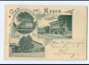 U1443-2081/ Gruß aus Appen Krs. Pinneberg AK 1899