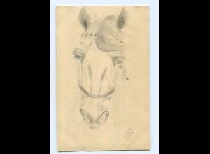 U2019/ Pferd Pferdekopf handgemalte AK 1912