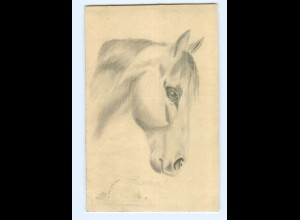 U2021/ Pferd Pferdekopf handgemalte AK 1912
