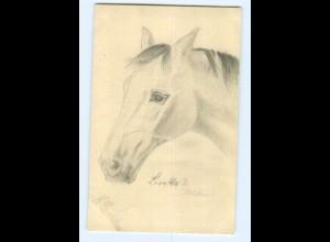 U2022/ Pferd Pferdekopf handgemalte AK 1912