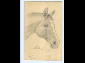 U2023/ Pferd Pferdekopf handgemalte AK 1912