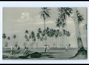 U2236/ Madang Papua-Neuguinea Gold Course AK ca.1955