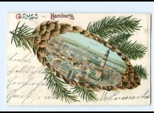 Y9678/ Gruß aus Hamburg Tannenzapfen Litho AK 1902
