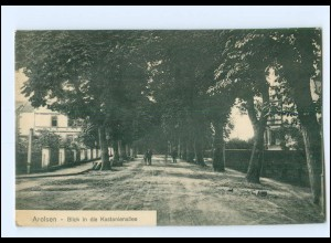 XX00620-3548/ Arolsen Kastanienallee Ak 1919
