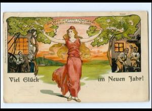 U4225/ Politik Die Welt ist unser Vaterland ! Litho AK 1908