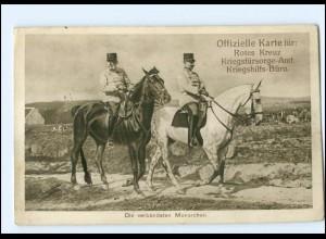 Y10664/ Der verbündeten Monarchen Kaiser Franz Joseg 1. Weltkrieg Ak 1915