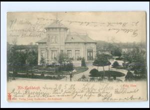 XX001895/ Hamburg Alt-Rahlstedt Villa Thea Ak 1906