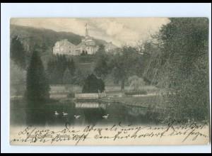 Y10435/ Burg Schlitz Mecklbg. Schweiz 1906 AK