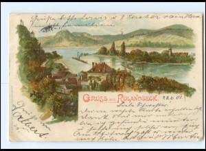 Y10441/ Gruß aus Rolandseck 1901 Litho AK