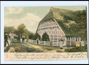 XX002918/ Hamburg Vierlanden Altes Bauernhaus AK 1905