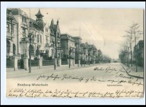 XX14744/ Hamburg Winterhude Agnesstraße AK 1904