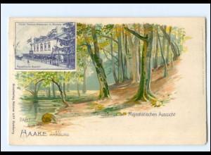 XX003272/ Hamburg Harburg Haake Majest. Aussicht Litho AK 1902
