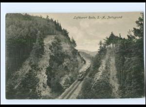 U4643-986./ Roda S.-A. Zeitzgrund Eisenbahn AK 1924