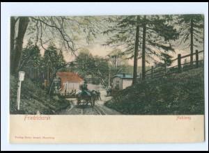 XX004199/ Friedrichsruh Hohlweg Kutsche ca.1900 AK