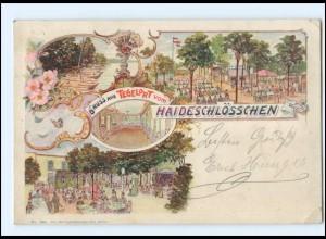 XX004476/ Gruß aus Tegelort vom Haideschlösschen AK Tegel 1899