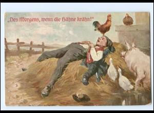 Y11280/ Bauer schläft Hahn kräht, Schwein, Gänse Humor AK 1915