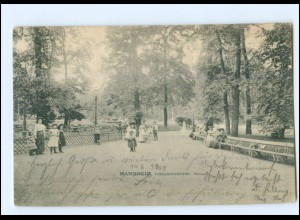 Y11189/ Mannheim Friedrichspark 1905 AK