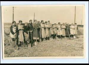 Y11376/ Frauen mit Spaten Landwirtschaft Foto AK ca.1925