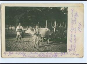 Y11604/ Prilep Mazedonien Ochsenfuhrwerk Foto AK 1917