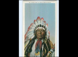 U5402/ Indianer Indians Chief in Typical Festive Regalia AK ca.1912