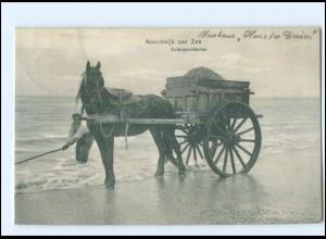 Y11627/ Noordwijk aan Zee Schelpenvisscher AK Niederlande 1908