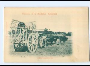 U6745/ Carretta Correntina Argentinien Artentina AK ca.1900