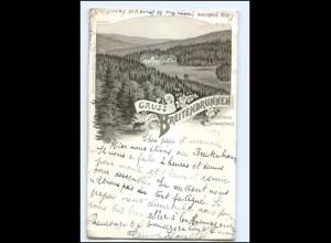 Y11701/Gruß aus Breitenbrunn Kurhaus Schwarzwald bei Sasbachwalden Litho AK 1898