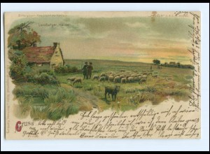 U6521/ Lüneburger Heide Halt gegen Licht Meteor Litho AK 1901 Schafe Schäfer