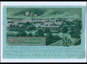 Y12121/ Truppenübungsplatz Munster Litho Silberdruck AK 1905