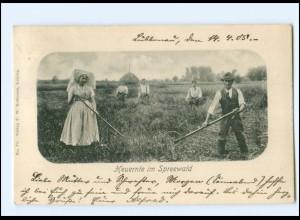 U6224-032./ Heuernte im Spreewald 1903 AK