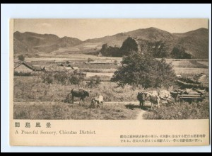 U6656/ Chientao District China AK ca.1925