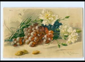 U6652/ Catherina Klein Weintrauben Blumen Litho AK 1913