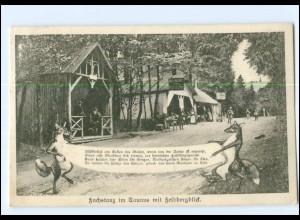 Y12194/ Fuchstanz im Taunus mit Feldbergblick AK 1908 Fuchs