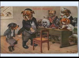 U6633/ Arthur Thiele Hundeschule Dackel Bulldogge 1911 AK Verlag: T.S.N.