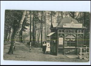 XX005232/ Hamburg Bergedorf Trinkhalle im Gehölz AK ca.1910