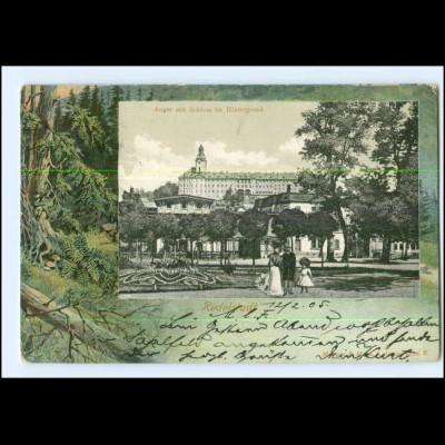 Y12521/ Rudolstadt Anger mit Schloss 1905 AK